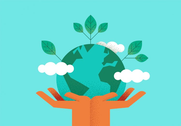 5 Ways You Can Make Your Office More Environmentally Friendly