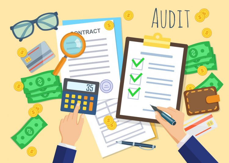 Investigating The Life of An Auditor